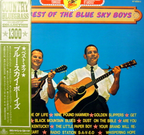 THE BLUE SHY BOYS